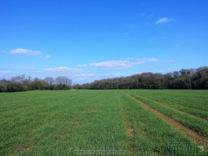 Prime Agricultural Land at Ballymagooly, Mallow, County Cork