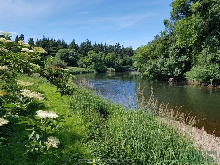 Trout Fishing - Ballyhooly, County Cork